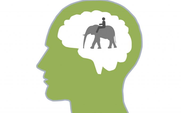 Călărețul și Elefantul: modelul dual al minții