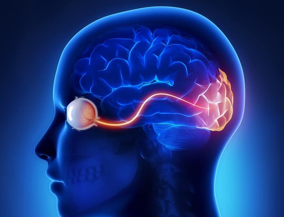 tulburări vizuale corticale viziunea ochilor bates